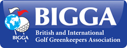 Bigga logo